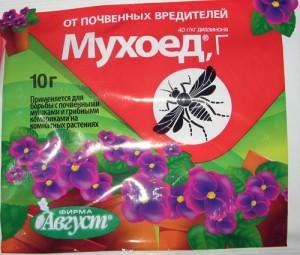 Избавляемся от мушек на комнатных растениях