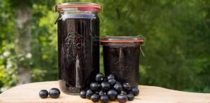 Купить семена, растение – Паслен черный (Solanum nigrum)