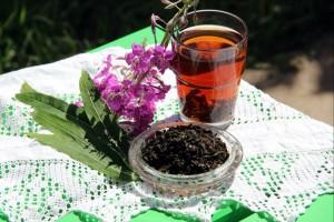 Как заготовить Иван-чай (способы)