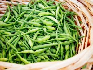 Купить семена, растение – Редис стручковый (Raphanus caudatus)