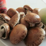 Купить мицелий Портобелло (Agaricus bisporus)